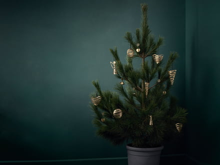 Stelton - Tangle Christmas decoration